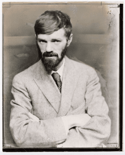 epsilon-theory-narrative-machine-august-17-2016-dh-lawrence